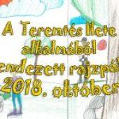 A Teremtés Hete alkalmából megrendezett rajzpályázat – 2018. október 3.